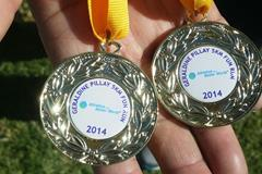 2014 Geraldine Pillay 5km Fun Run medals (Organisers)
