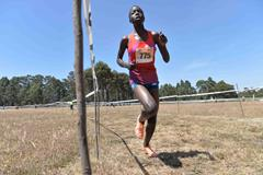 Agnes Tirop at the 2015 Discovery Kenya race (Jiro Mochizuki)