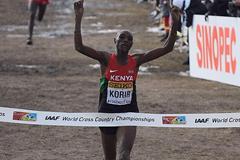 Japhet Kipyegon Korir wins the senior men's race at the 2013 IAAF World Cross Country Championships, Bydgoszcz, Poland  (Getty Images)