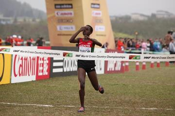 Agnes Tirop wins the senior women's race at the IAAF World Cross Country Championships, Guiyang 2015 (Getty Images)