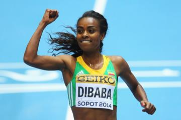 Genzebe Dibaba in the 3000m at the 2014 IAAF World Indoor Championships in Sopot (Getty Images)