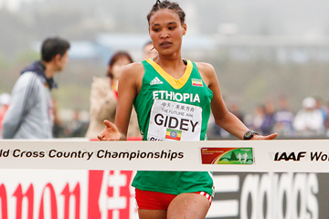 Letesenbet Gidey wins the junior women's race at the IAAF World Cross Country Championships, Guiyang 2015 (Getty Images)