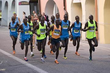 Leaders in the 2014 Ceske Budejovice Half Marathon  (Organisers)